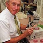 Donald Dickson, Ph.D.